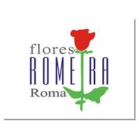flores-romeira-roma-1411377745_big